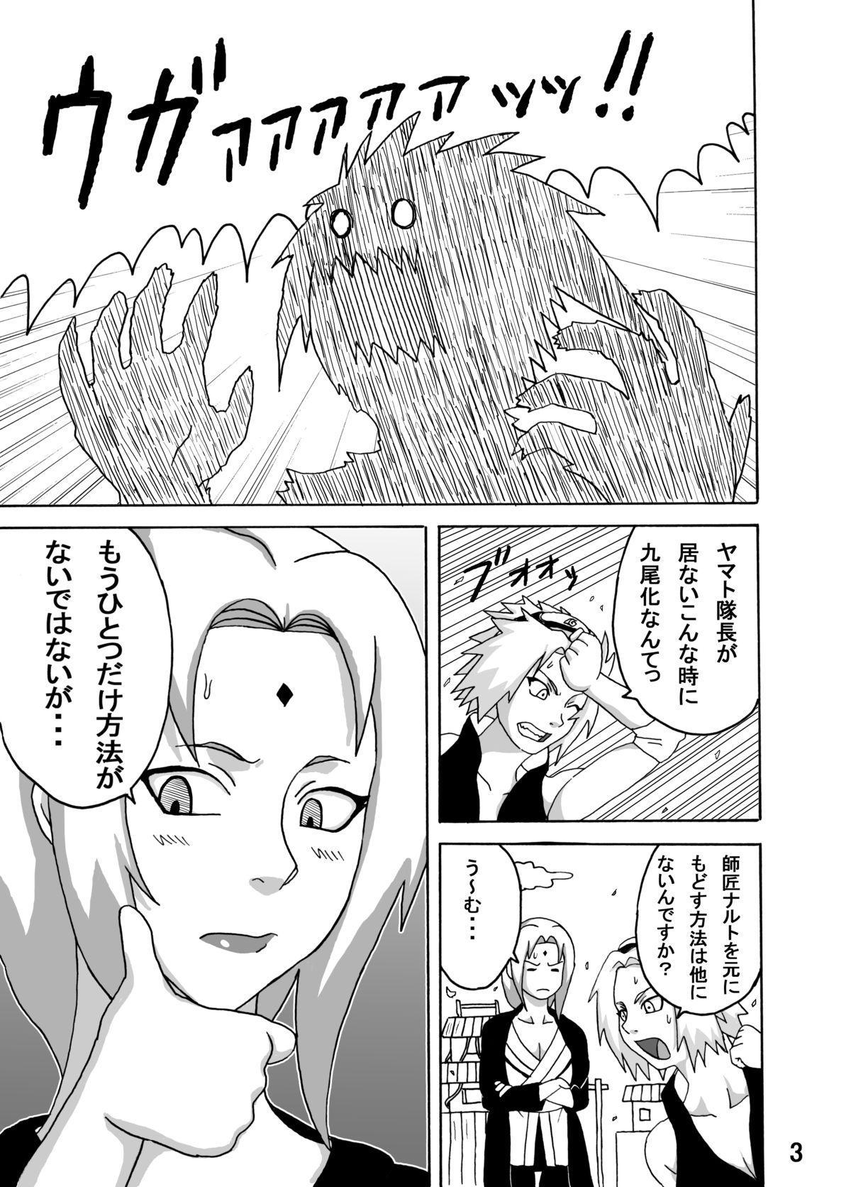 Tsunade no Inchiryou 3